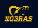 Logo Berlin Kobras